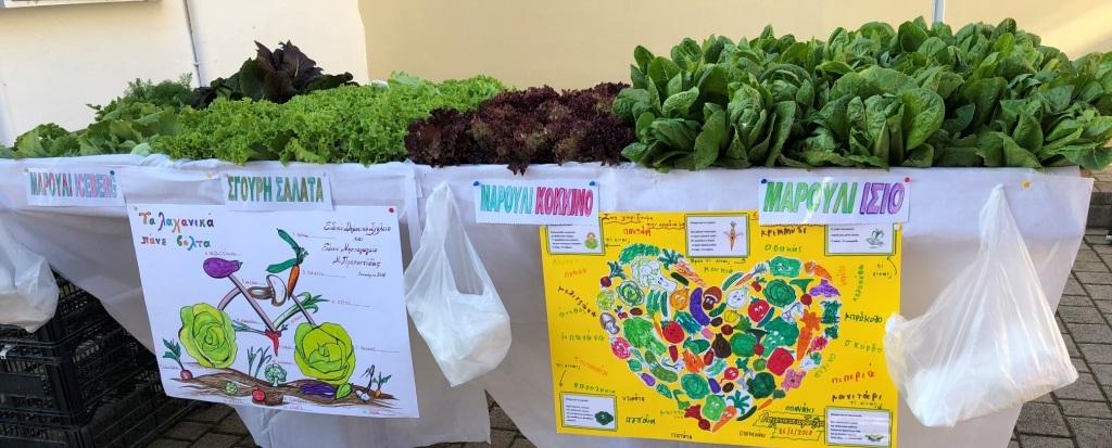 Σχολικός Συνεταιρισμός Παζάρι λαχανικών 2018